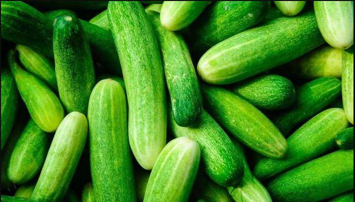 Cucumber Buying Tips : ಸೌತೆಕಾಯಿ ಕಹಿ ಅಥವಾ ಸಿಹಿಯಾಗಿದೆ ಎಂದು ಗುರುತಿಸುವುದು ಹೇಗೆ ಗೊತ್ತ?
