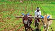 ತೋಟಗಾರಿಕೆ ಇಲಾಖೆಯ ವಿವಿಧ ಯೋಜನೆಗಳ ಸಹಾಯಧನ : ರೈತರಿಂದ ಅರ್ಜಿ ಆಹ್ವಾನ
