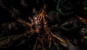 ಭಾರತದಿಂದ ಆಸ್ಕರ್ ಗೆ ಎಂಟ್ರಿ ಕೊಟ್ಟ ಮಲಯಾಳಂ ಚಿತ್ರ ಜಲ್ಲಿಕಟ್ಟು