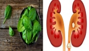 Kidney Stone : ಕಿಡ್ನಿ ಸಮಸ್ಯೆ ಇದೆಯಾ..? ಈ ಐದು ವಸ್ತುಗಳಿಂದ ದೂರ ಇರಿ.!