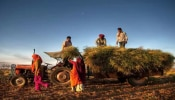 Kisan Samman : ಶೀಘ್ರದಲ್ಲೇ ರಿಲೀಸ್ ಆಗಲಿದೆ ಕಿಸಾನ್ ಸಮ್ಮಾನ್ ಯೋಜನೆಯ ದುಡ್ಡು.!