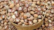 Arecanut Price: ರಾಜ್ಯದ ವಿವಿಧ ಮಾರುಕಟ್ಟೆಗಳಲ್ಲಿ ಇಂದಿನ ಅಡಿಕೆ ಬೆಲೆ ಎಷ್ಟಿದೆ ನೋಡಿ