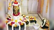 Mahashivaratri 2021 : ಮಹಾಶಿವರಾತ್ರಿಯಂದು ಶಿವನ ಕೃಪೆಗೆ ಪಾತ್ರರಾಗಲು ಹೀಗೆ ಮಾಡಿ..!