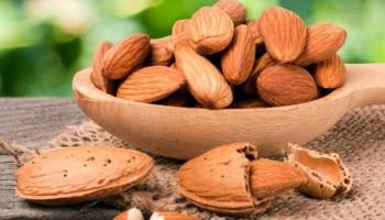 Almond Benefits : ಆರೋಗ್ಯಕ್ಕಾಗಿ ಸೇವಿಸುವ ಬಾದಾಮಿಗೆ ಸಿಪ್ಪೆ ಇರಬೇಕಾ-ಬೇಡ? ಇಲ್ಲಿದೆ ಸರಿಯಾದ ಉತ್ತರ