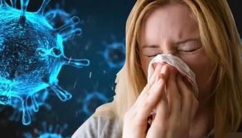 Big Expose: Coronavirus ಗೆ ಕಡಿವಾಣ ಹಾಕುತ್ತಾ ಈ ವೈರಸ್? ಸಂಶೋಧನೆಯಲ್ಲಿ ಮಹತ್ವದ ಮಾಹಿತಿ ಬಹಿರಂಗ