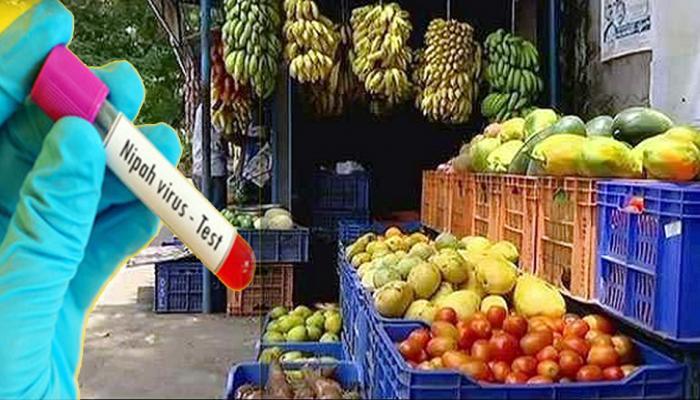 ನಿಪಾ ವೈರಸ್: ಹಣ್ಣು-ತರಕಾರಿಗಳ ರಫ್ತಿಗೆ ನಿಷೇಧ
