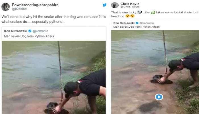 VIDEO: ಹಾವಿನ ಹಿಡಿತದಿಂದ ನಾಯಿಯನ್ನು ರಕ್ಷಿಸಿದ ವೀರರು