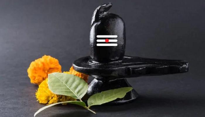 Mahashivaratri : ಮಹಾಶಿವನ ಪೂಜೆಯಲ್ಲಿ ಈ ಐದು ವಸ್ತುಗಳನ್ನು ಯಾವತ್ತೂ ಬಳಸಬೇಡಿ