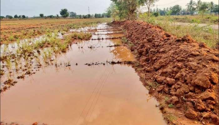 Monsoon Season: ರಾಜ್ಯದಲ್ಲಿ ಮಾನ್ಸೂನ್ ಆರಂಭ: ರೈತರಲ್ಲಿ ಮುಖದಲ್ಲಿ ಭರವಸೆ!