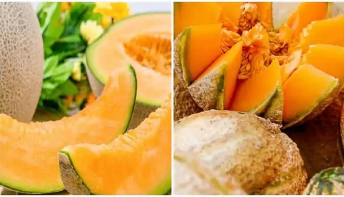 How to buy Kharbooja: ಖರ್ಬೂಜ ಖರೀದಿ ವೇಳೆ ಈ ಸರಳ Tips  ನೆನಪಿಡಿ