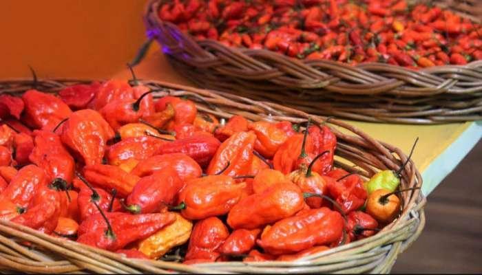 King Chilli : ವಿಶ್ವದ ಅತ್ಯಂತ 'ಖಾರವಾದ ಮೆಣಸಿನಕಾಯಿ' ನಮ್ಮ ದೇಶದ ಈ ಸ್ಥಳದಲ್ಲಿ ಮಾತ್ರ ಸಿಗುತ್ತದೆ!