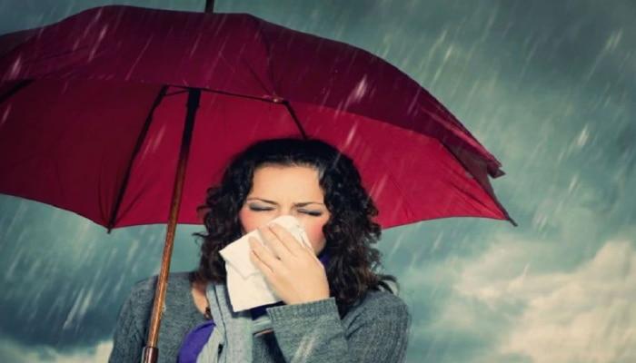 Herbs For Monsoon : ಮಳೆಗಾಲದಲ್ಲಿ ಖಂಡಿತಾ ತಿನ್ನಲೇಬೇಕು ಈ ಆಹಾರ
